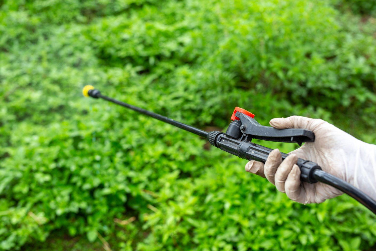 כיצד להתמודד עם מזיקים בגינה