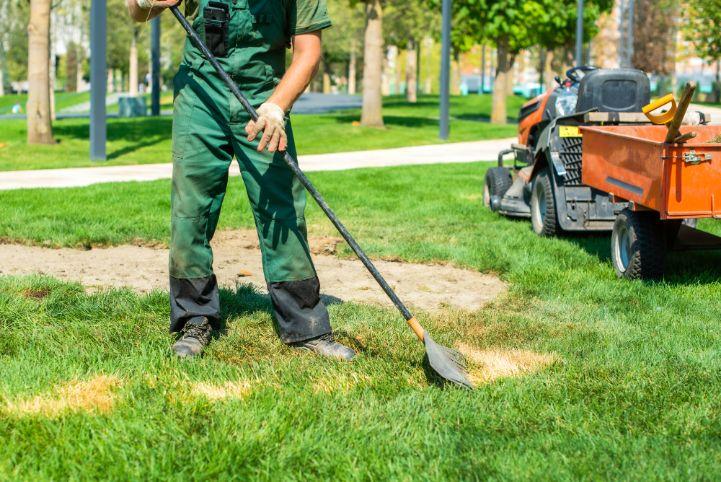 הכנת הקרקע לשתילת דשא