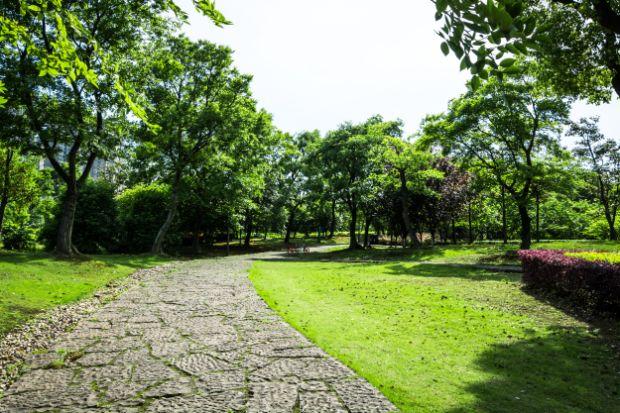 ריצוף אבן לגינה